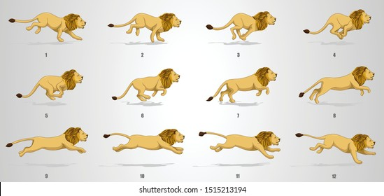 Lion Run cycle Animation sequence, animation frames