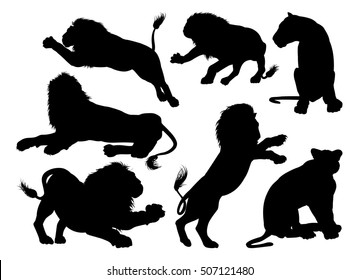 Lion silhouettes. A set of male and female lions in silhouette
