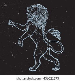 Lion standing on it's hind legs and roaring. Zodiac figure. Sketch on black nightsky background with stars. EPS10 vector illustration.