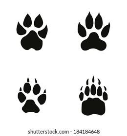 lion, tiger, wolf, bear footprint