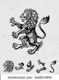 Lion vintage illustration editable and detailed