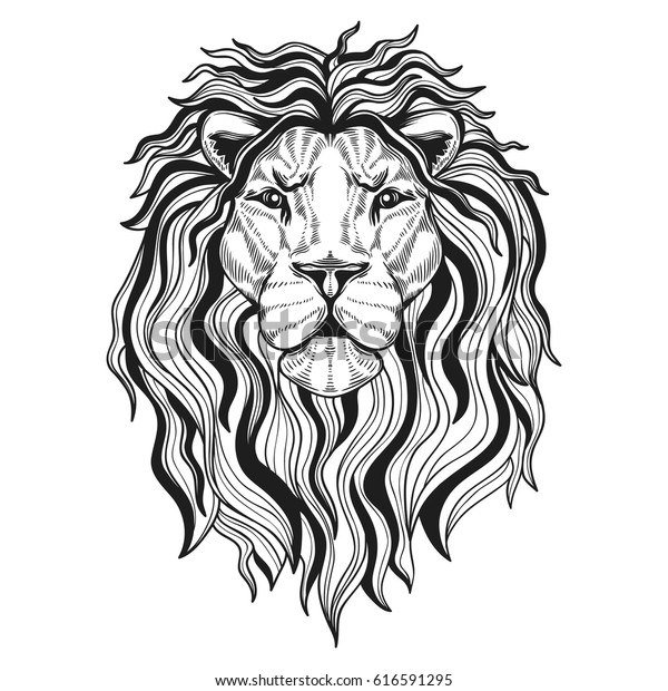 Vector De Stock Libre De Regalías Sobre Lions Head Your