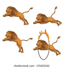 Lions in the jump. vector illustration