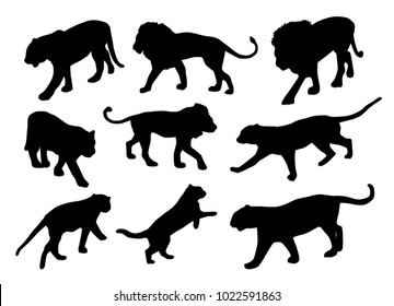 Lions and tigers vector silhouettes