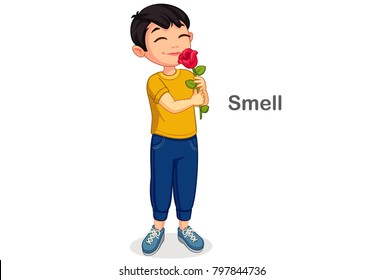 Little boy smelling a flower showing a Smell sense
