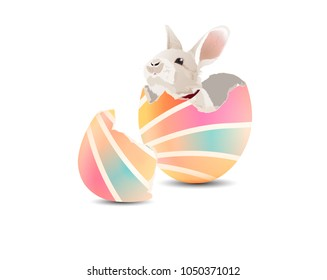 A little bunny in colorful Easter egg on white background. Vector illustration.