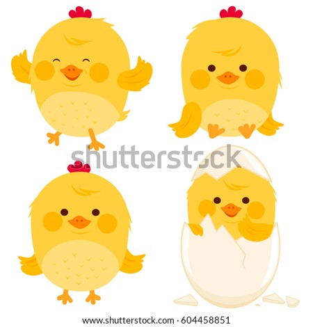 little chicken collection stock vector royalty free 604458851