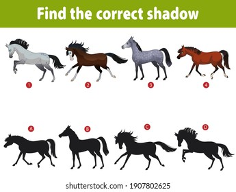Little cute horses. Child's puzzle, find the correct shadow. Puzzle games with children. Horses of different breeds. Cartoon vector illustration isolated.