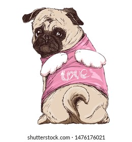Little cute pug puppy in an angel costume with wings and the inscription LOVE. Hand drawing dog for greeting cards and posters. Happy valentine's day congratulation.