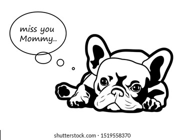 A little french bulldog puppy is missing his mommy. A Frenchie lies down on the background with the text balloon, you can fill your text on this.