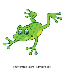 Little funny cartoon frog is jumping.   Isolated on a white background.