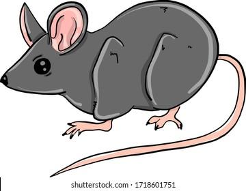 Little mouse, illustration, vector on white background