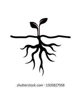Little plant seedling germinating from seed icon. Vector illustration.