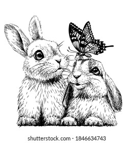 Little rabbits with a butterfly. Wall sticker. Sketch, artistic portrait of two cute little rabbits with a butterfly on a white background. Digital vector drawing