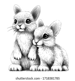 Little rabbits. Wall sticker. Sketch, artistic, drawn portrait of two cute little rabbits on a white background.