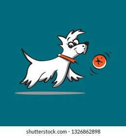 little white dog with a red collar and a red ball