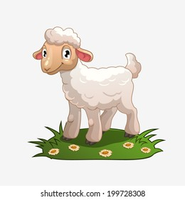 Little white lamb on the grass, isolated vector