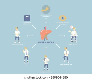 liver cancer and anatomy, health care, liver disease infographic concept, flat vector illustration cartoon character design clip art
