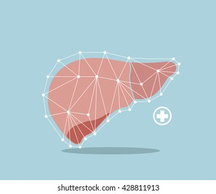 liver flat design vector illustration
