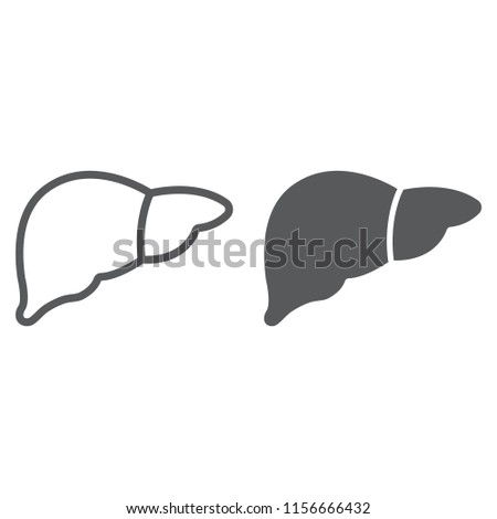 Liver Line Glyph Icon Anatomy Biology Stock Vector Royalty Free