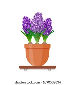 Living room design decoration element. Houseplant with flowers in a pot in flat style. Indoor gerb on shelf
