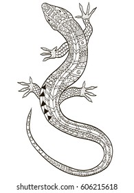 Lizard coloring vector for adults illustration. Anti-stress coloring for adult. Zentangle style. Black and white lines listen. Lace pattern