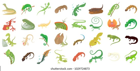 Lizard icon set. Cartoon set of lizard vector icons for web design isolated on white background