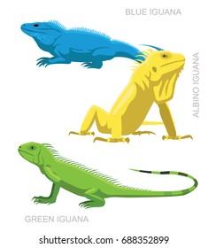 Lizard Iguana Set Cartoon Vector Illustration