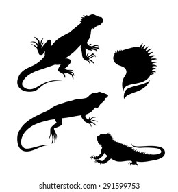 Lizard iguana set of silhouettes vector. Collection of animal icons.  Illustrations in different poses.