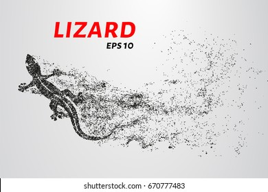 Lizard of particles. Silhouette of a lizard is of little circles