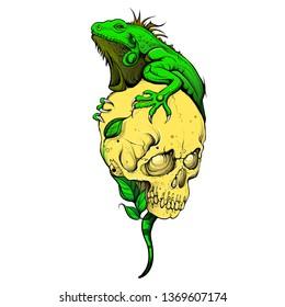 lizard skull vector eps color tattoo