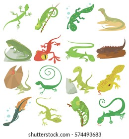 Lizard type animals icons set. Cartoon illustration of 16 lizard type animals vector icons for web