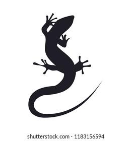 Lizard vector icon logo and symbols template