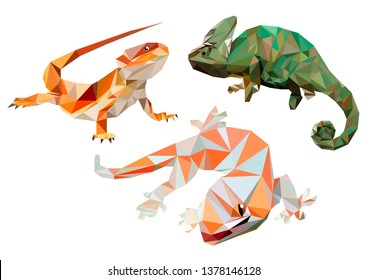 Lizards, in low poly. Vector. Three pets - lizards. Chameleon, gecko and bearded agama.