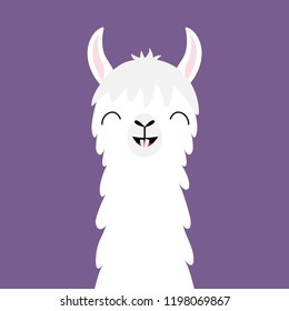 Llama alpaca animal face neck. Funny teeth. Fluffy hair fur. Cute cartoon kawaii character. Childish baby collection. T-shirt, greeting card, poster template print Flat design Violet background Vector