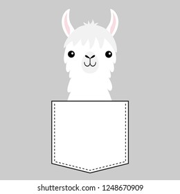 Llama alpaca face head in the pocket. Cute cartoon animals. Dash line. Kawaii character. White and black color. T-shirt design. Baby gray background. Isolated. Flat design. Vector