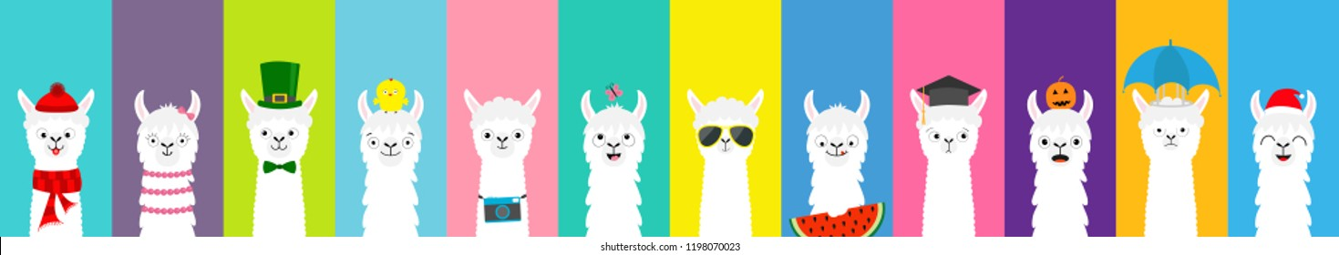 Llama alpaca set. Cute funny cartoon lama character. All seasons. Happy Valentines Christmas St Patrick day Easter Egg Bird Chicken Umbrella Santa hat, sun Flat design Colorful background Vector