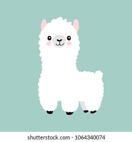 Lama Cartoon Alpaca. Lama-Tier-Vektorgrafik einzeln. Feine, lustige, handgezeichnete Kunst. Design für Karte, Aufkleber, Stofftextilien, T-Shirt. Kinder, Kinder im modernen Stil