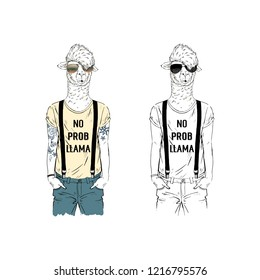 Llama man hipster dressed up in cool tee shirt with funny quote. Anthropomorphic animal illustration. Hand drawn vector graphic.