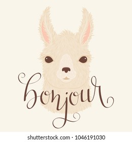 "Llama vector illustration. Hand lettering ""bonjour"" in French"