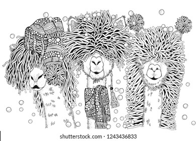Llamas party. Happy new year. Coloring Book page for Adult and children in doodle style. A4 size. Black and white  background. Hand-drawn christmas alpacas.