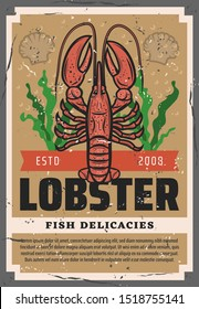 Lobster animal, seafood and fish restaurant delicacy. Vector ocean and sea fishery industry, lobster crab and shells in seaweed, chef gourmet delicatessen food