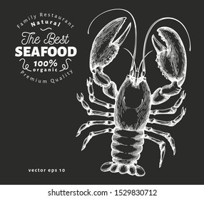 Lobster illustration. Hand drawn vector seafood illustration on chalk board. Engraved style. Retro sea animal
