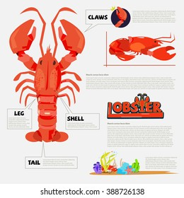 Lobster. infographic with typography design for header - vector illustration