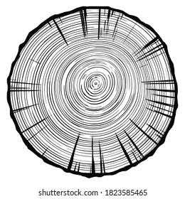 Log cut, vector illustration. Tree rings pattern, shades of gray.