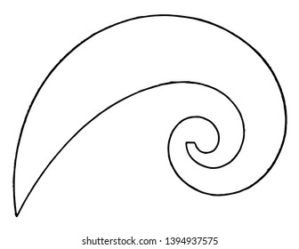 Logarithmic Spiral Curve French Curves is approximately closely shaped to a cycloid is used to draw short elliptical radius curves by using points vintage line drawing or engraving illustration.