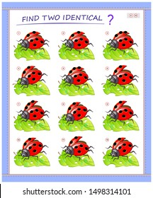 Logical puzzle game for little children. Need to find two identical ladybirds. Educational page for kids. IQ training test. Printable worksheet for textbook. Back to school. Vector cartoon image.