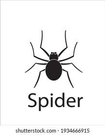 a logo of black spider