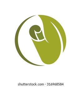 logo collection for interior and carpets