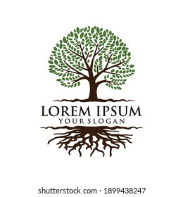 LOGO DESIGN WITH THEME TREE AND ROOTS